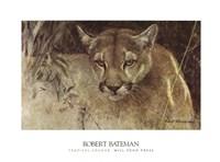 Tropical Cougar Framed Print