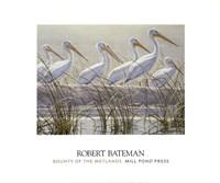 Bounty of the Wetlands (detail) Fine Art Print