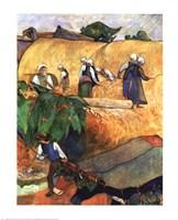 Harvest Scene Fine Art Print