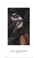 "10"" x 16"" Chickadee Pictures"