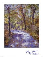 Lumiere D'automne Fine Art Print