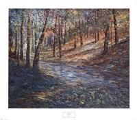 Hidden Path Fine Art Print