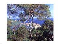 Bordighera, Trees by Claude Monet - various sizes