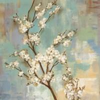 Kyoto Blossoms II Framed Print
