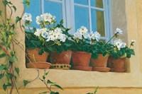 Chateau Creancey Window Fine Art Print