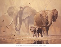 African Elephants and Namaqua Doves Fine Art Print
