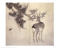 Deer Pine Bat Fine Art Print
