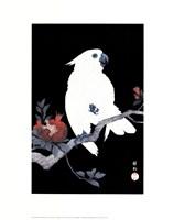 Ukiyo-E Parrot Fine Art Print