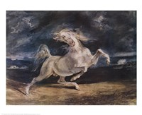 Frightened Horse Fine Art Print