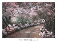 Azalea Walk Fine Art Print