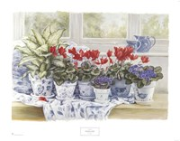 Windowsill Garden Fine Art Print