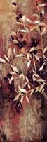"""Sienna Berries I by Liz Jardine - 12"""" x 36"""""""