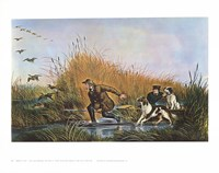 Wild Duck Shooting Fine Art Print