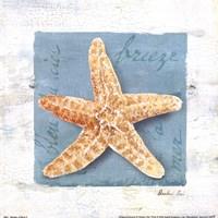 Shades of Blue II Fine Art Print