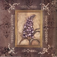 "20"" x 20"" Lilac Pictures"
