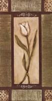 "16"" x 30"" White Tulips"