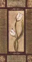 White Tulips II Fine Art Print