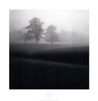 """34"""" x 35"""" Landscape"""