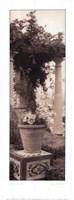 """Jardin Botanico by Alan Blaustein - 9"""" x 24"""""""