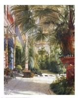 The Palm House Framed Print