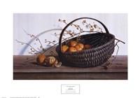 "Oranges by Pauline Eble Campanelli - 23"" x 16"""