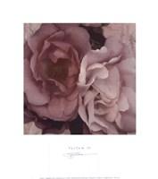 Parfum IV Fine Art Print