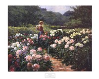 Woman in a Garden of Peonies Fine Art Print