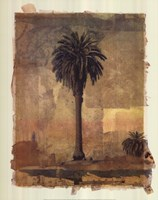 Palm Study 1 Fine Art Print