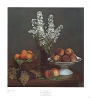 Bouquet de Julienne et Fruits Fine Art Print