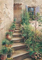 Stairway in Provence Fine Art Print