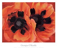 Oriental Poppies, 1928 Framed Print