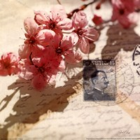Vintage Letters and Cherry Blossoms Fine Art Print