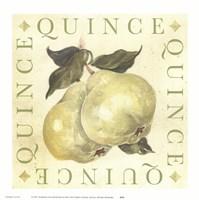 Quince Fine Art Print