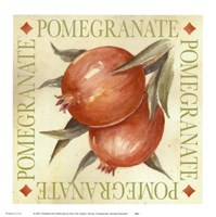 Pomegranate Fine Art Print