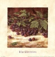 Blackberries Fine Art Print