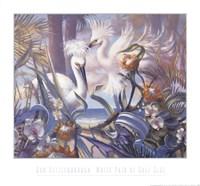 White Pair At Gulfside Fine Art Print