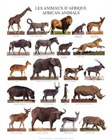 "African Animals by Mali Nave - 10"" x 12"""