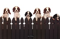 "Curious Puppies by Judy Crane - 36"" x 24"" - $11.49"
