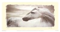 """Appaloosa by Judy Mandolf - 17"""" x 9"""""""