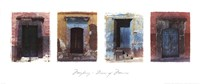 Doors of Mexico Fine Art Print