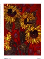 Sunflowers II Fine Art Print