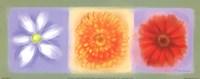 3 Flower Panel Fine Art Print
