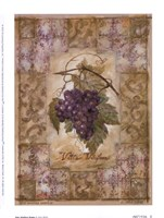 Vitis Vinifera Grape Fine Art Print