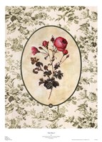"Toile Rose I by Mary Beth Zeitz - 20"" x 28"""