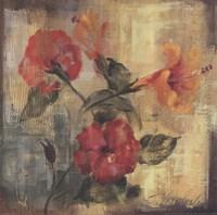 "Flamboyant Hibiscus II by Silvia Vassileva - 14"" x 14"""