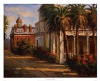 Casa De Palmera Fine Art Print