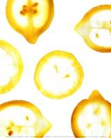 Lemon Yellow Fine Art Print