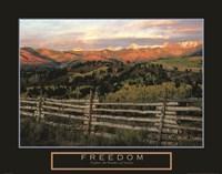Freedom - Explore the Wonders of Nature Fine Art Print