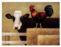 Barnyard Cow Fine Art Print