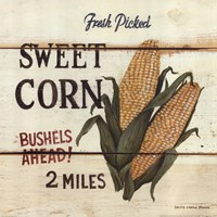 Fresh Picked Sweet Corn Framed Print